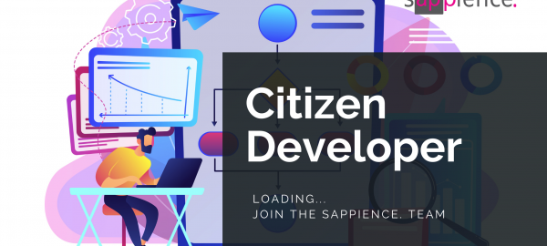 A citizen developer working on a Low-Code business application